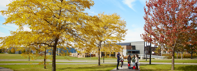 photo of students talking on a walkway at York surrounded by Autumn colours