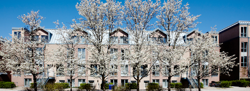 view of student housing on Passy in the spring